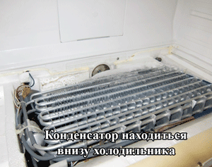 kondensator-vnizu-holodilnika